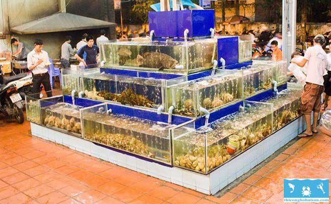 Công trình hồ hải sản tứ giác 3 tầng tại Cần Giờ
