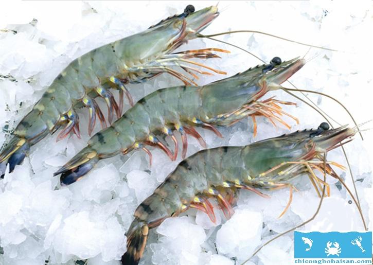 Lợi ích hồ hải sản