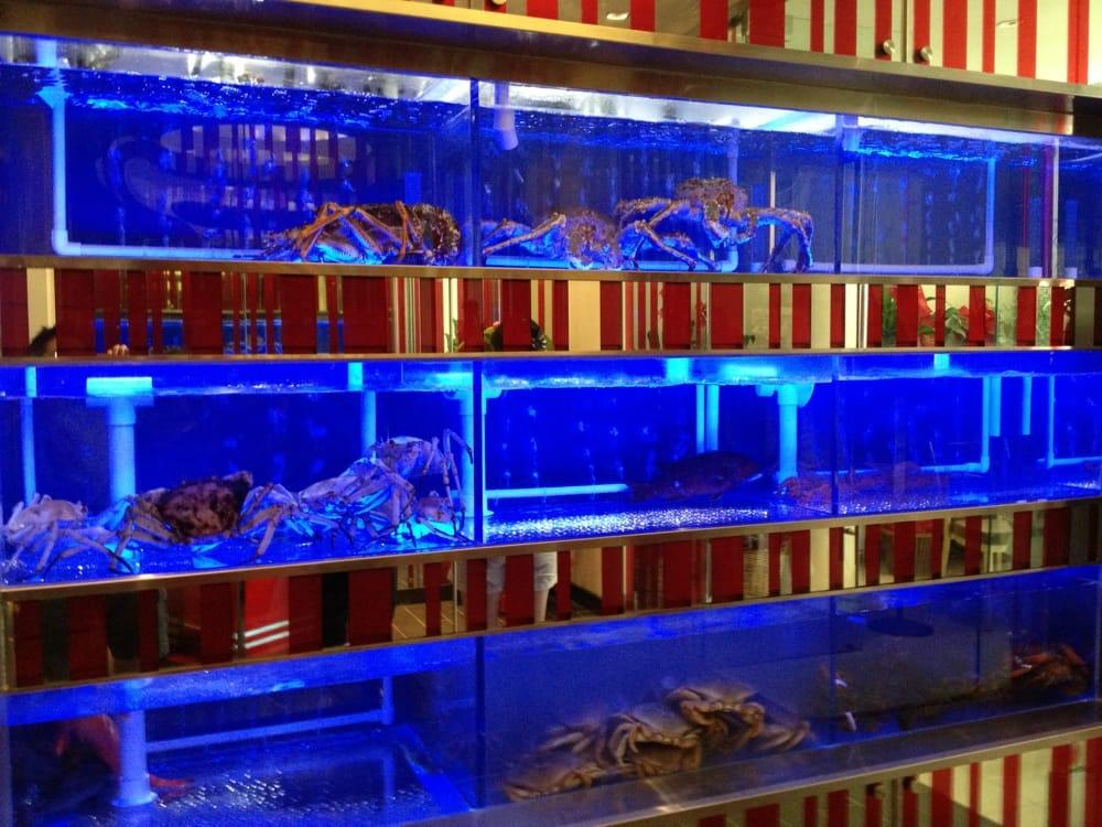 Làm hồ hải sản nhà hàng uy tín chuyên nghiệp tại tpHCM