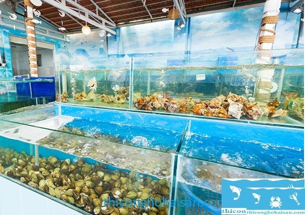 Bật mí cách xử lý khi hồ hải sản bị đục nước